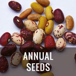 anual seeds