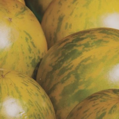 Picture of Yellow Zebra Tomatoes